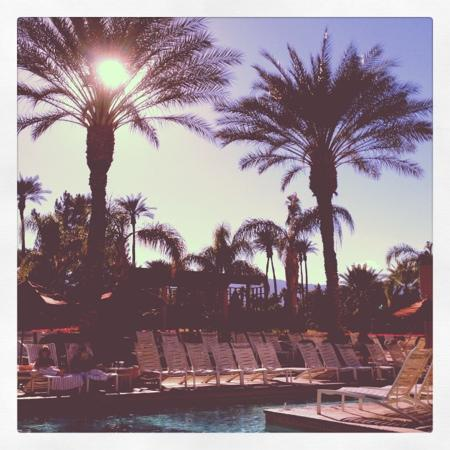 Renaissance Indian Wells Resort & Spa: poolside views, amazing!!!