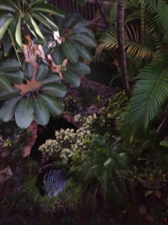 Hale Hui Kai Condominium: the gardens 