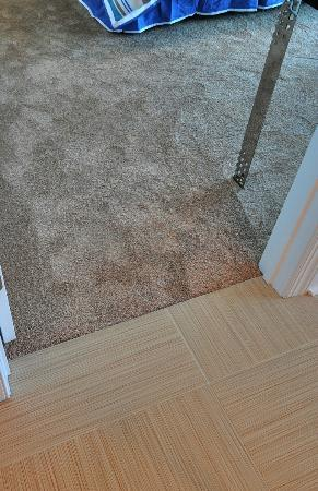 Mar Vista Grande: Plush carpeting I