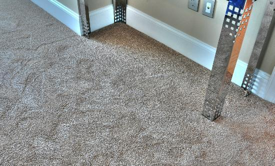 Mar Vista Grande: Plush carpeting II