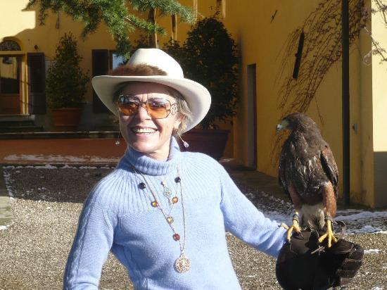 Villa Poggio Bartoli: unica scuola di falconeria in italia