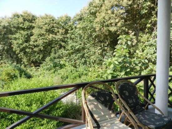 Aahana the Corbett Wilderness - an Eco Friendly Resort: Balcony view