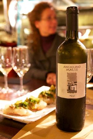 The Venetian Vine : A favorite organic wine producer