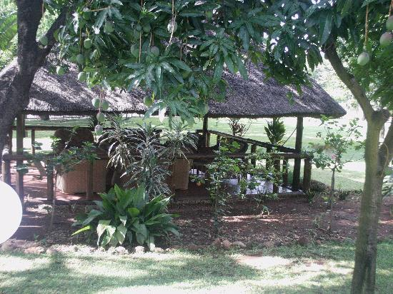 Sunbird Lodge: Lapa by the braai area