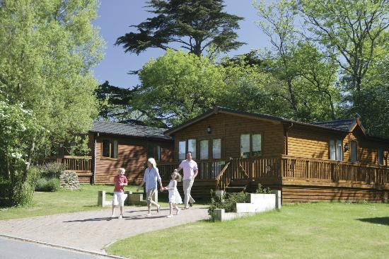 Parkdean - St Minver Holiday Park: Park Lodge Setting at Parkdean St Minver Holiday Park