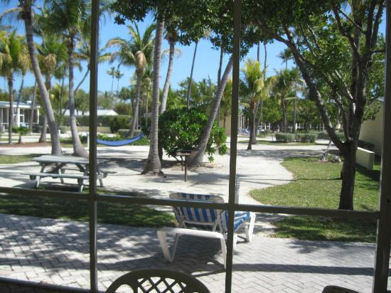 Islander Resort: View out of patio