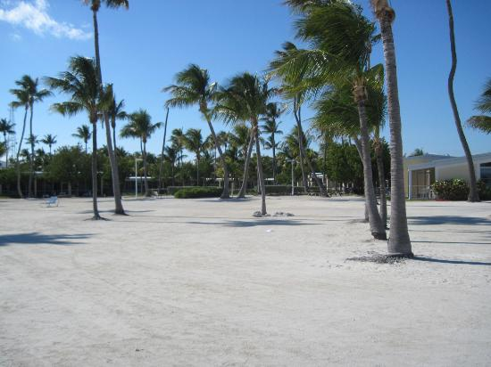 Islander Resort: View from beach to bungalows