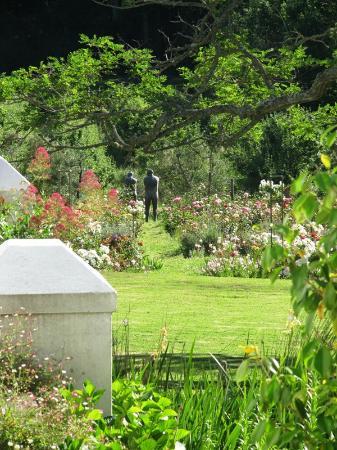 Wildekrans Country House: Adam & Eve in the rose garden