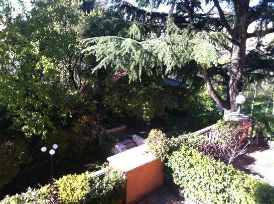 Hotel Quinta De Los Cedros: Jardin del Hotel
