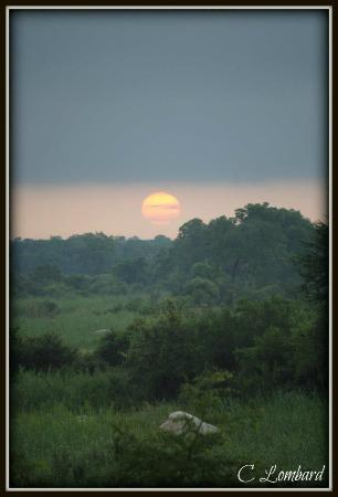 Sabie River Bush Lodge: Sunrise over Sabie River Bush LLodge and the Kruger National Park South Africa