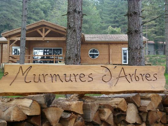 Murmures d'Arbres : Le chalet