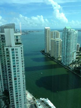 Hotel Beaux Arts Miami: The View