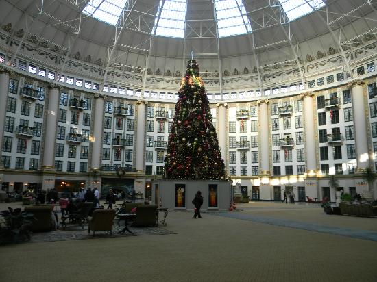 West Baden Springs Hotel: View of Atrium and Christmas tree