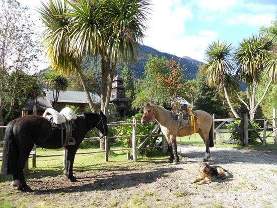 Campo Aventura: At the Riverside Lodge