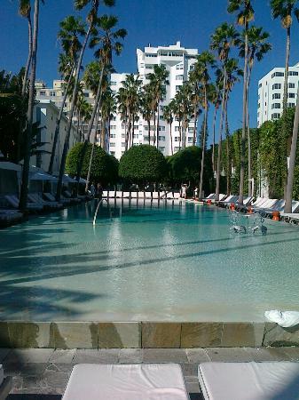 Delano South Beach Hotel: il top la piscina ed i pool party