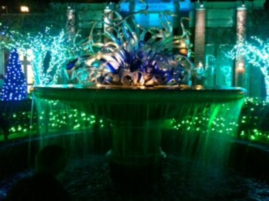 Orb Light Show To Music Picture Of Atlanta Botanical