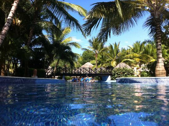 Dreams Punta Cana Resort & Spa: Pool