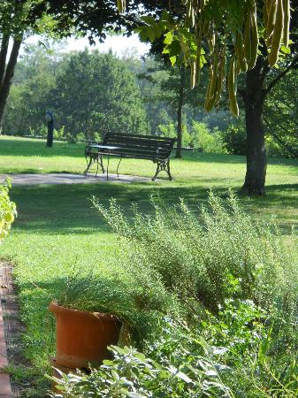 Villa Bellaria B&B : il giardino