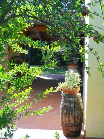 Villa Bellaria B&B : in mezzo al verde