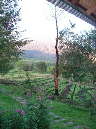Aikmel, Indonesia: Rinjani in the morning from villa Tiga