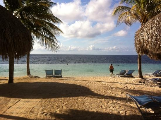 Renaissance Curacao Resort & Casino: infinity pool. great breakfast view.