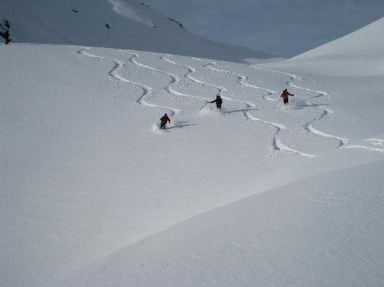Chamonix Offpiste/freeride with Guides des cimes
