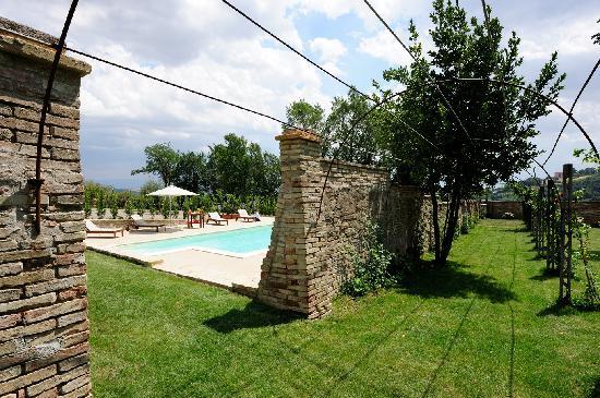 Villa Forasiepi : La piscina