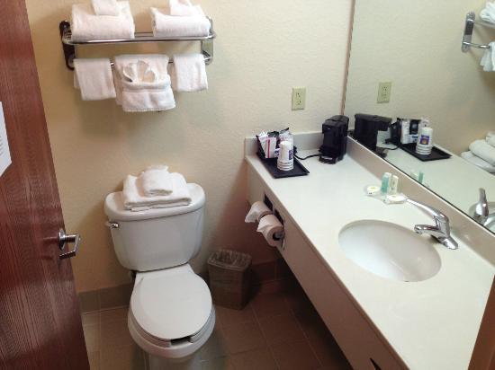 Comfort Inn & Suites North Orlando / Sanford: Bathroom.