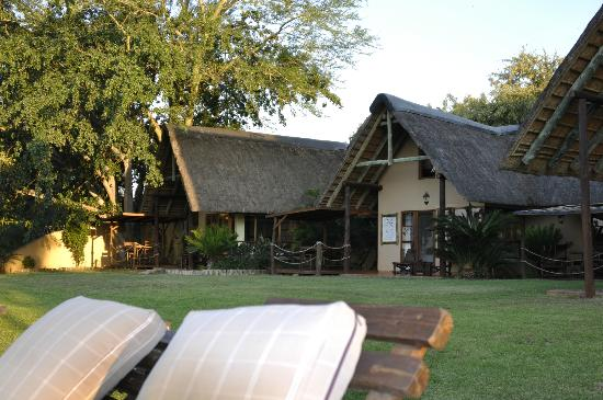 Buckler's Africa: Hôtel vu du jardin