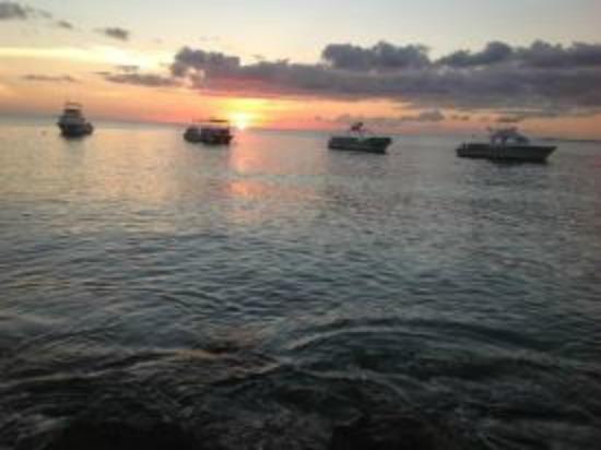 Divi Flamingo Beach Resort and Casino: Bonaire Sunset