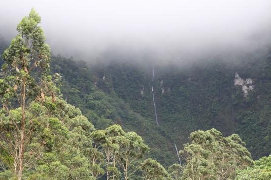 Hotel Quelitales: Einer der Wasserfälle