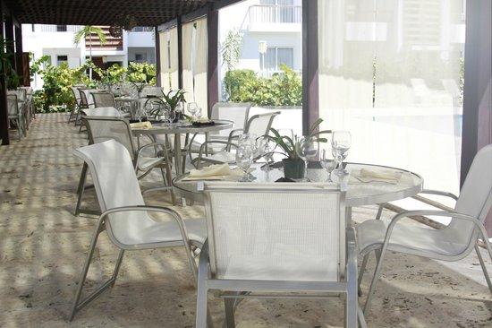 Karibo's Garden :                                     Salon