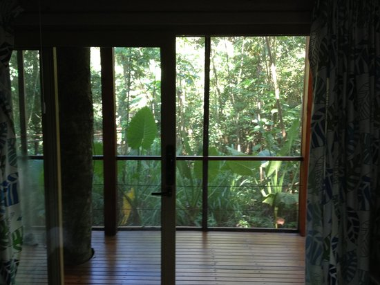 La Cantera Jungle Lodge: lower room view