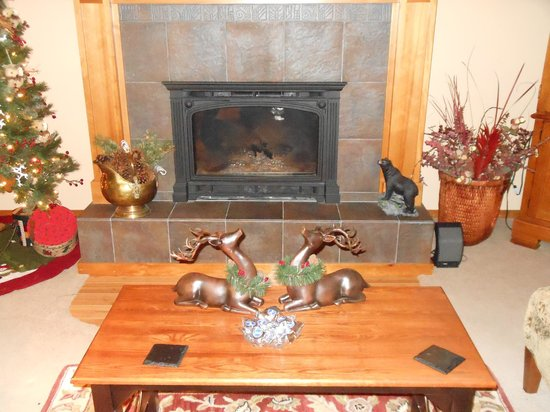 All Seasons River Inn: The fireplace in the living room