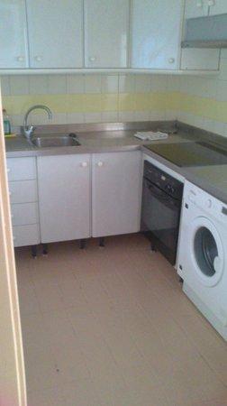 Optimist Aparthotel: kitchen, cockroaches were in the sink