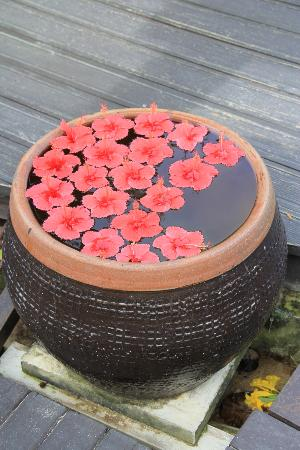 Holiday Inn Resort Phi Phi Island : fleurs