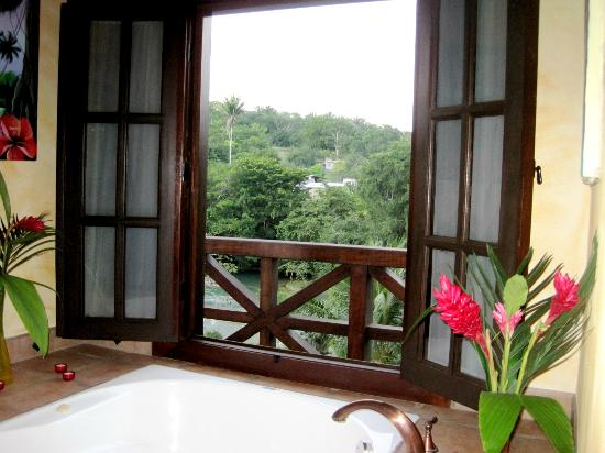 Mahogany Hall Boutique Resort: View from bathroom in suite
