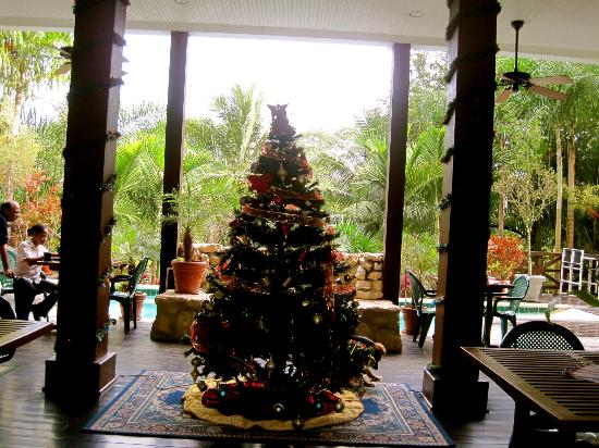 Mahogany Hall Boutique Resort : Foyer
