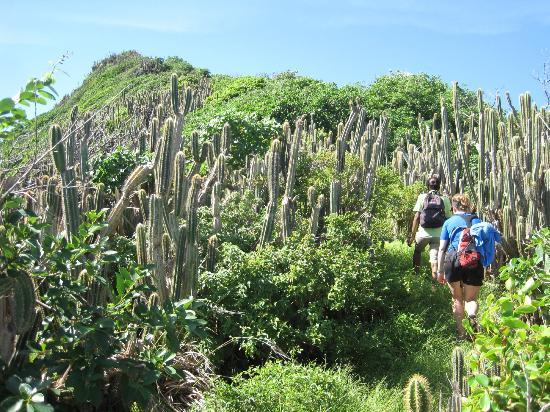 Maria Islands Nature Reserve