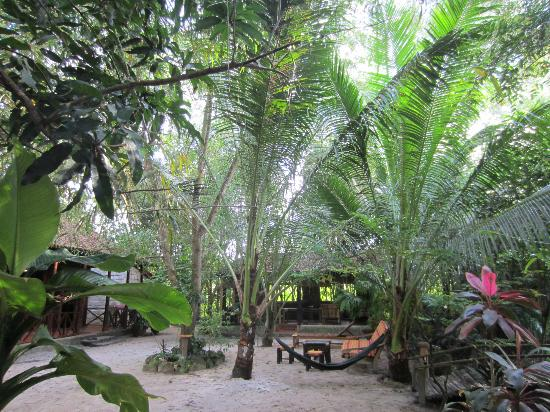 Freedomland Phu Quoc Resort: garden
