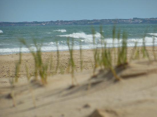 Gaestehaus Saxonia: Am Strand, 100 Meter vom Haus entfernt