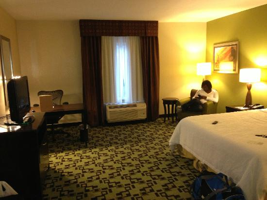 Hilton Garden Inn Birmingham/Trussville: Room