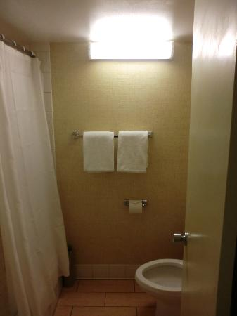 Waikiki Resort Hotel: small bathrooms