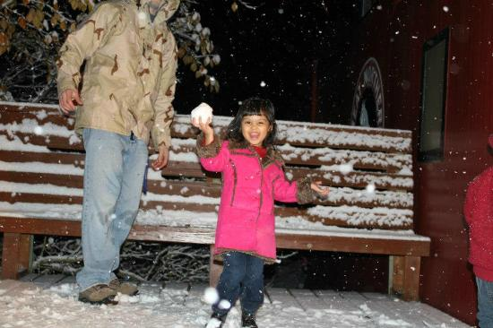 Iron Horse Inn Bed and Breakfast: Throwing snowballs on the deck