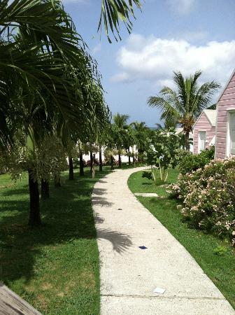 Cocobay Resort: the walk around the resort, so quiet