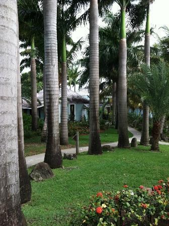 Cocobay Resort: RESORT OFFICE