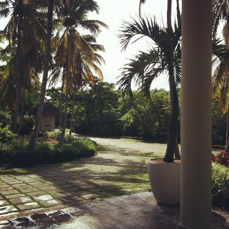 Sivory Punta Cana Boutique Hotel: alrededores