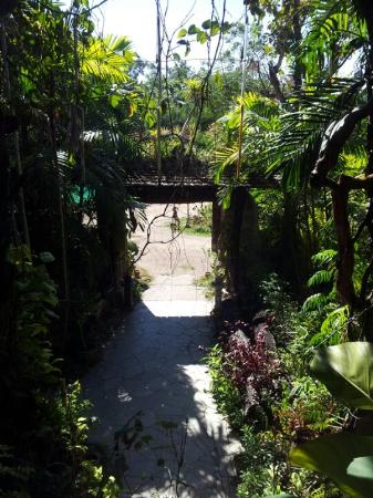 The Forest Resort & Spa: Entrance to the Resort