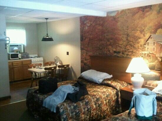 Pocono Pines Motor Inn & Cottages : Kitchenette