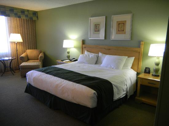 دبل تري باي هيلتون توسن - ريد بارك: COMFORTABLE BED